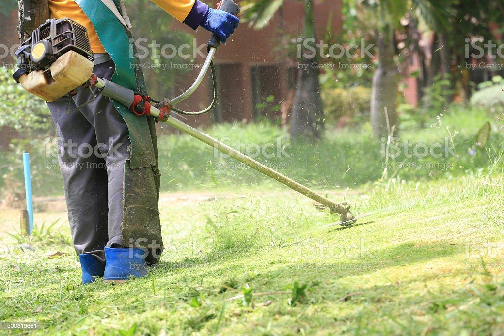 lawn mower worker cutting grass in green field stock photo