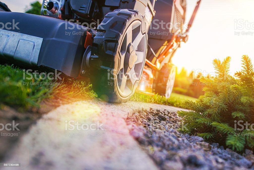 Lawn Mowing Closeup stock photo