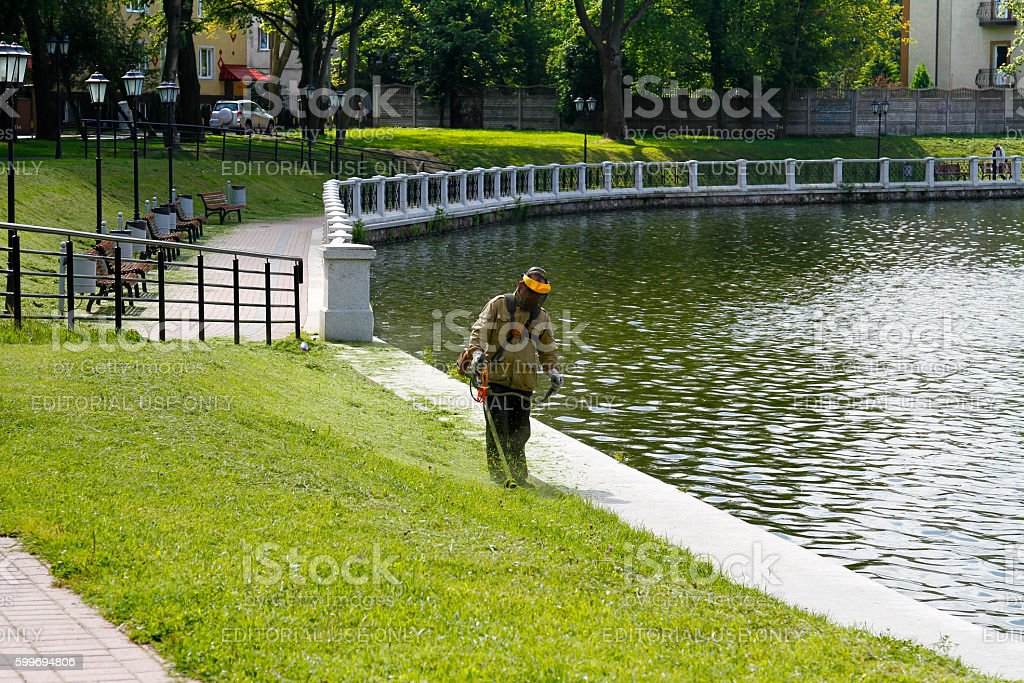 Lawn mowing near the pond stock photo