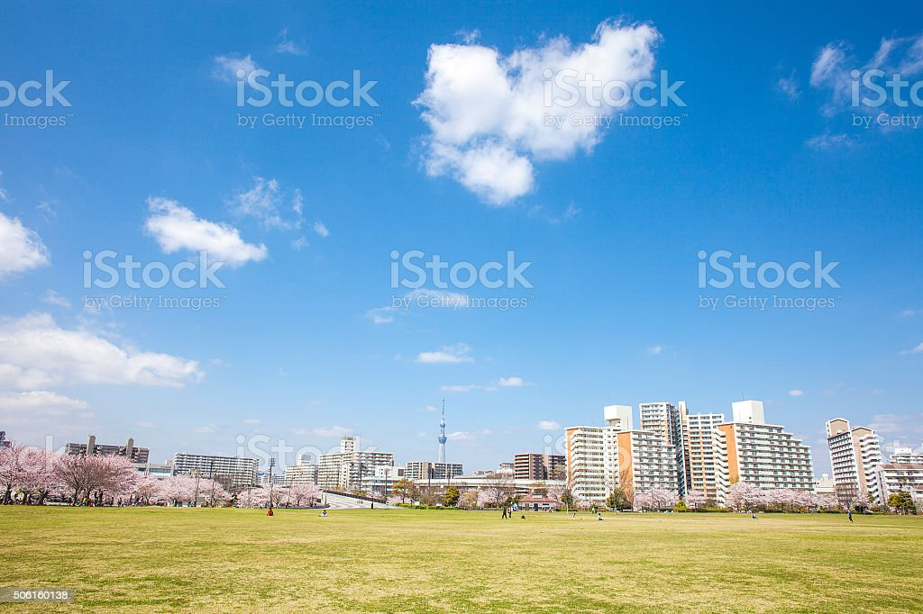 Lawn Park stock photo
