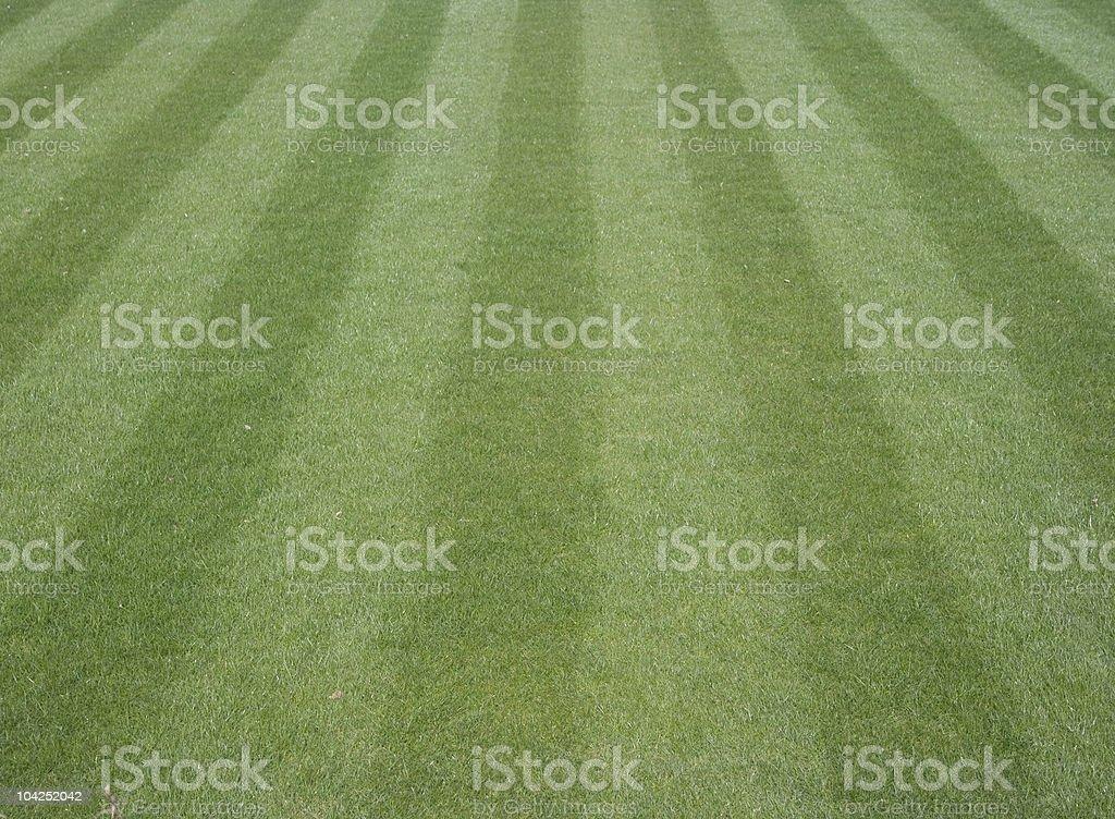 Lawn Lizenzfreies stock-foto