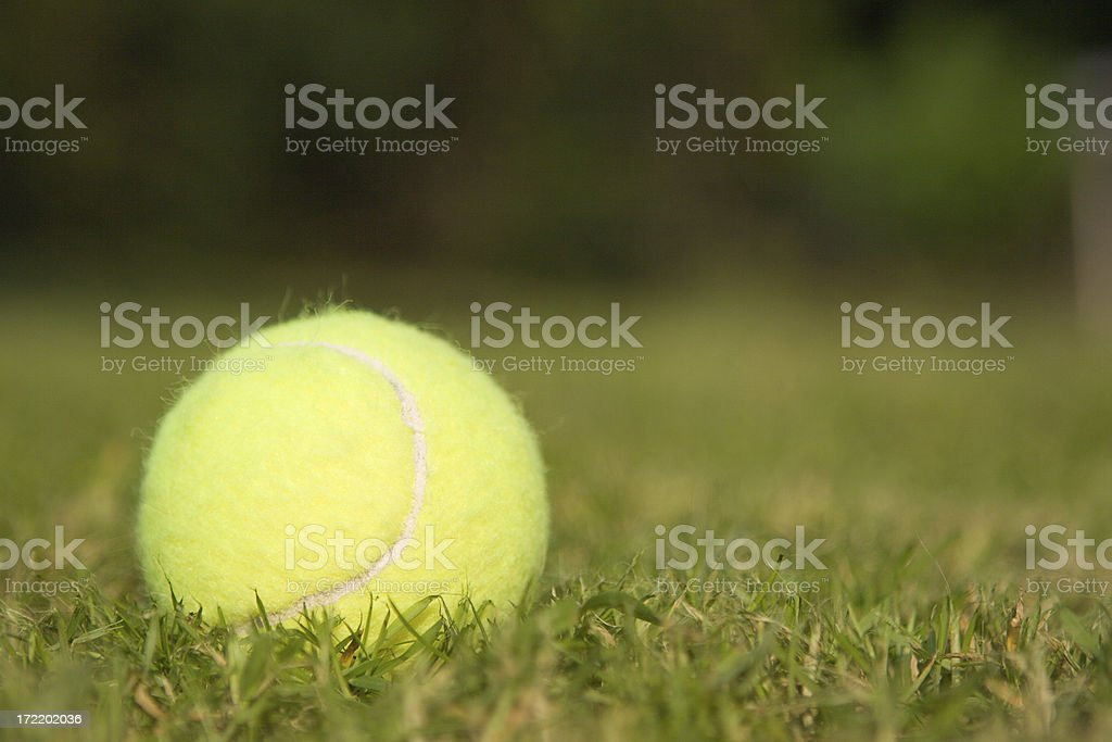 Lawn Tennis stock photo