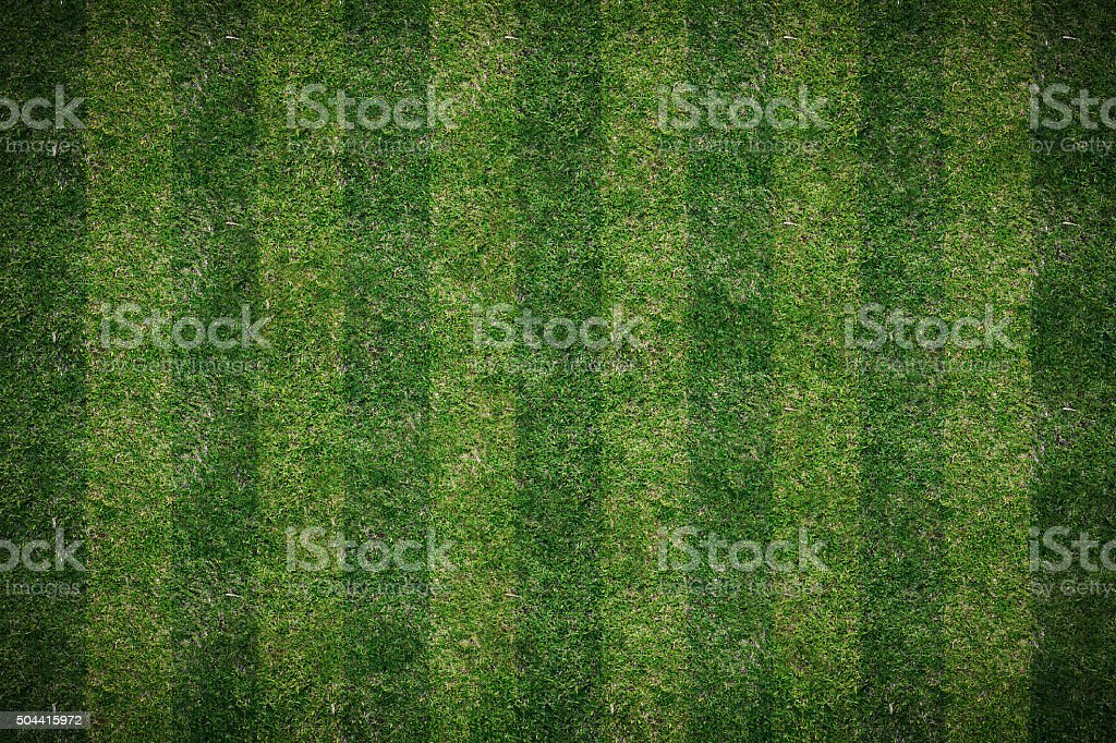 lawn top view background stock photo