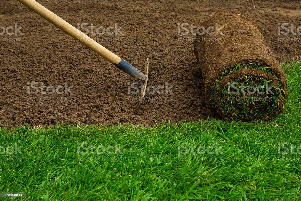 Lawned garden stock photo