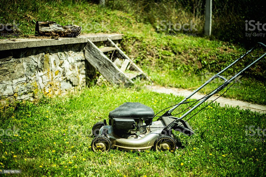 Lawnmower cutting grass in the garden stock photo