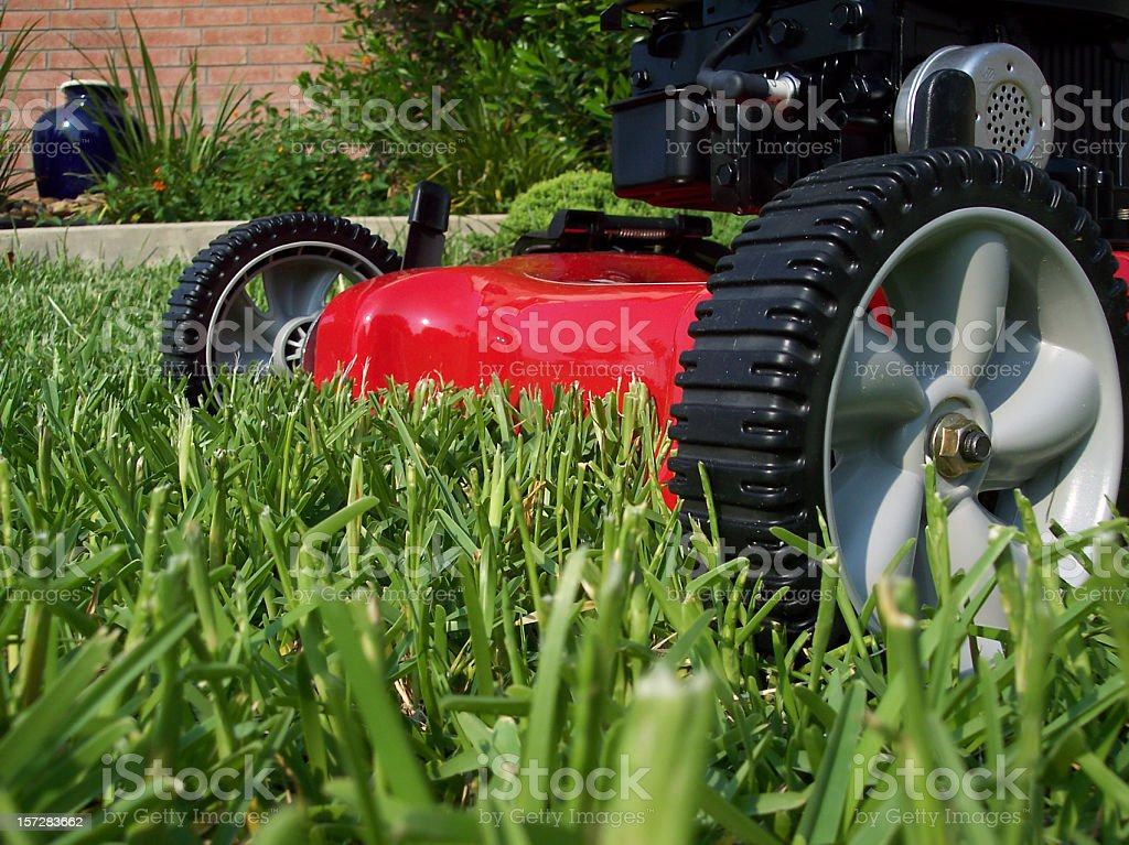 Lawnmower cutting grass on a sunny day stock photo