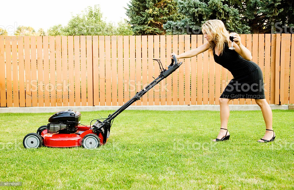 Lawnmower Posh royalty-free stock photo