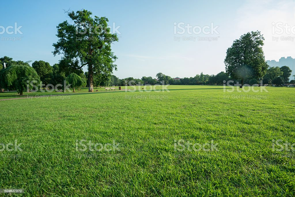 Lawns stock photo