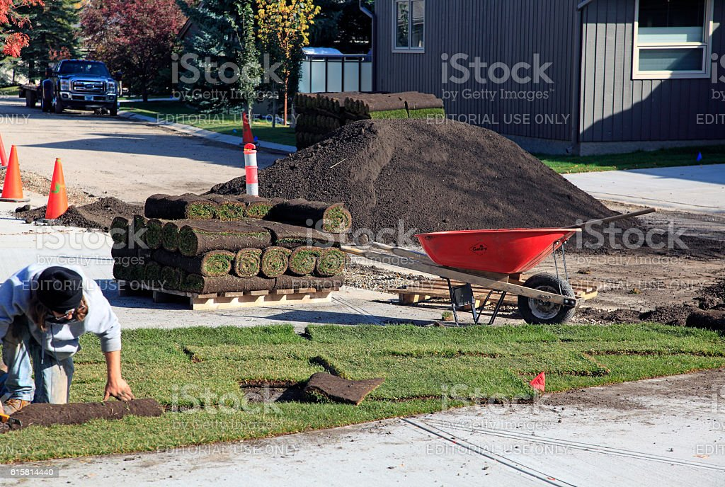 Laying Sod In Fall After Installing The New Driveways stock photo