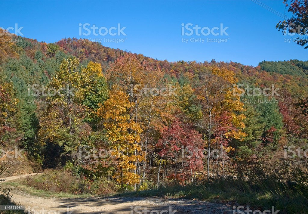 Lazy Autumn Road royalty-free stock photo