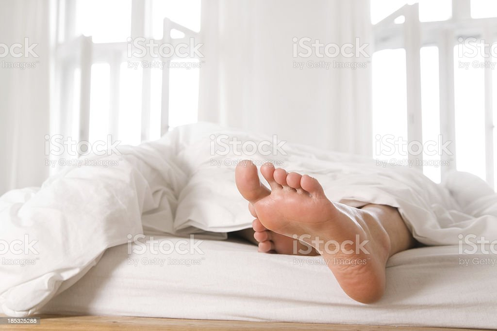 Lazy morning stock photo