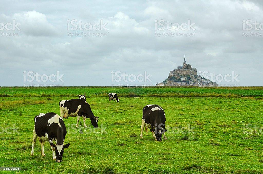 Le Mont-Saint-Michel (Normandy, France) stock photo