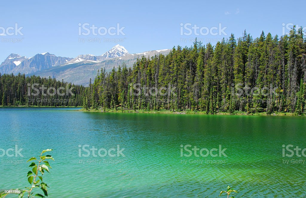 Leach Lake stock photo