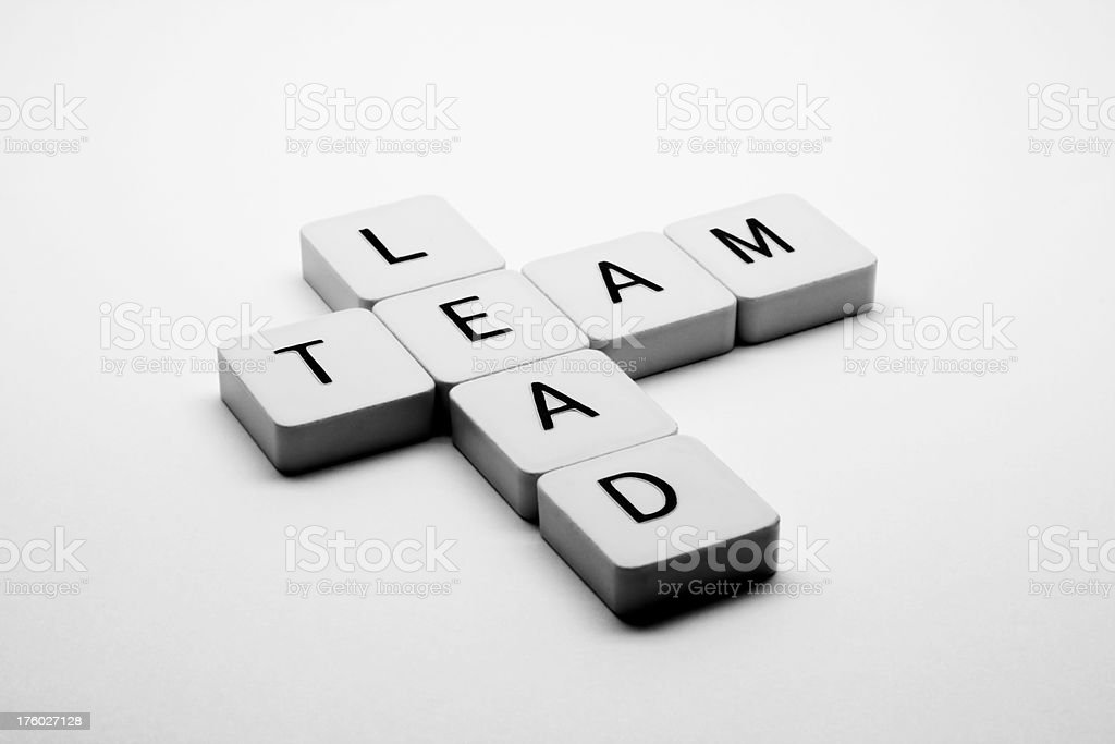 Lead a Team royalty-free stock photo