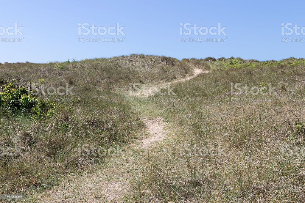 Lead me to the beach royalty-free stock photo