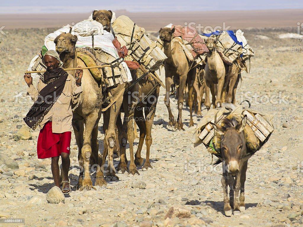 Leading caravan stock photo