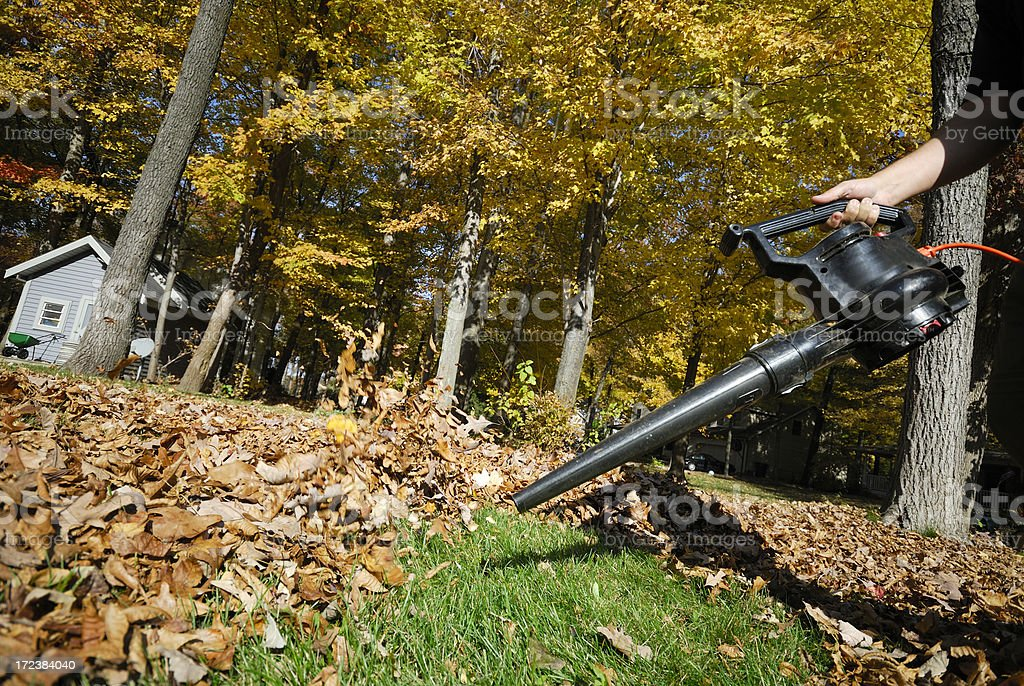 Leaf blower at work stock photo
