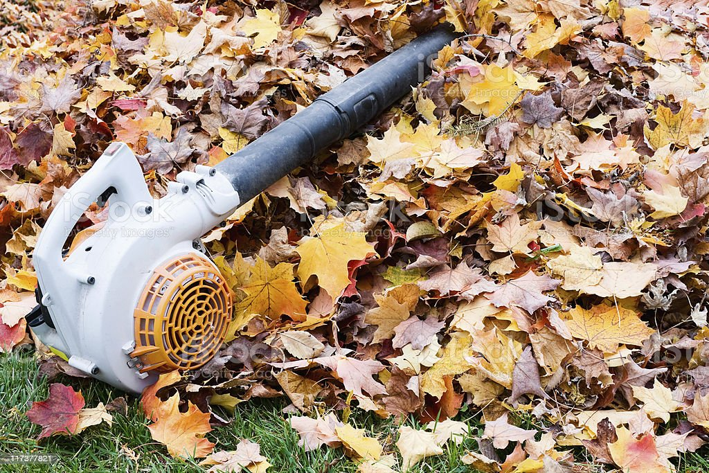 Leaf Blower on a Pile of Leaves. Fall Clean-Up stock photo