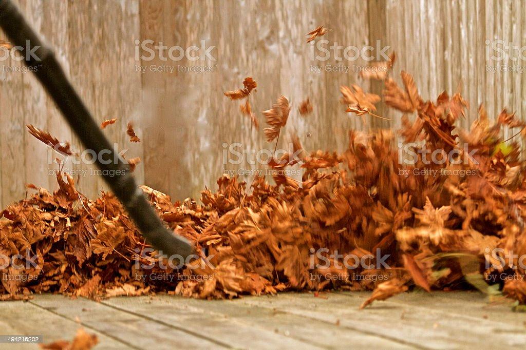 Leaf Blower stock photo