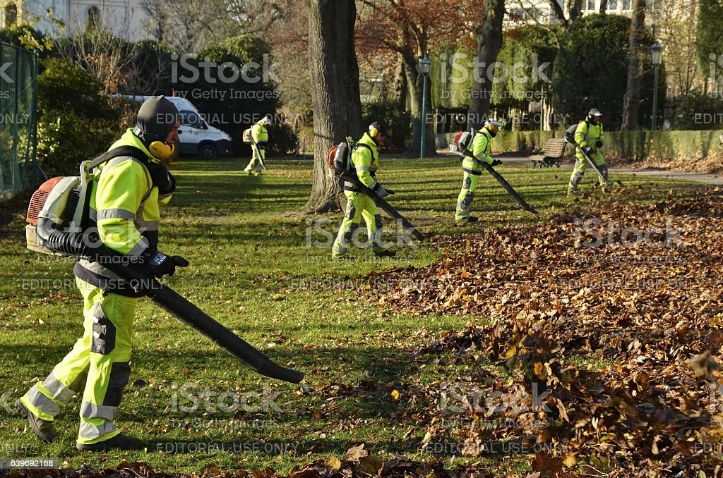 Leaf blowers group view stock photo