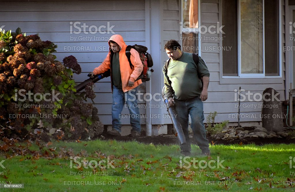 Leaf Blowers stock photo