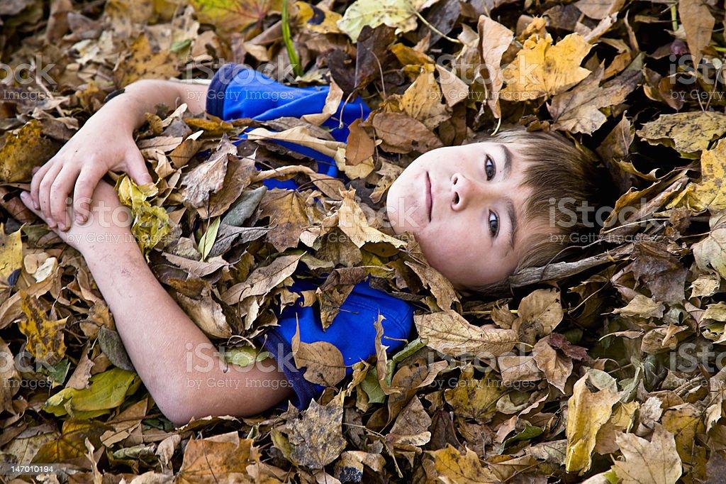 Leaf Boy stock photo