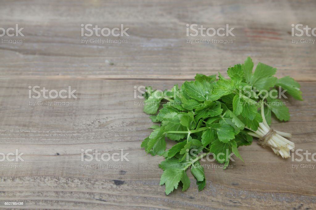 Leaf celery in a wooden background stock photo