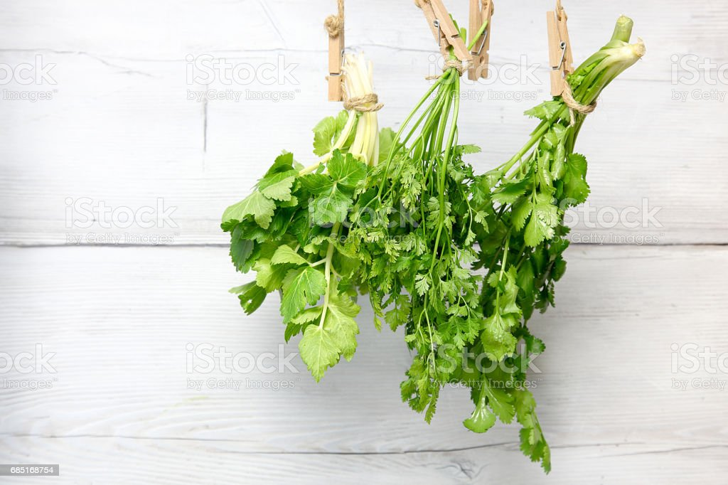 Leaf celery,chervil and Coriander in a wooden background stock photo