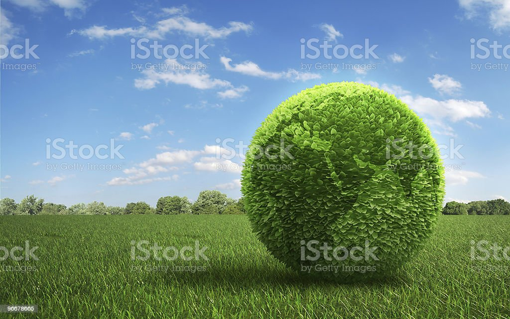 Leaf covered Earth on a field of grass royalty-free stock photo
