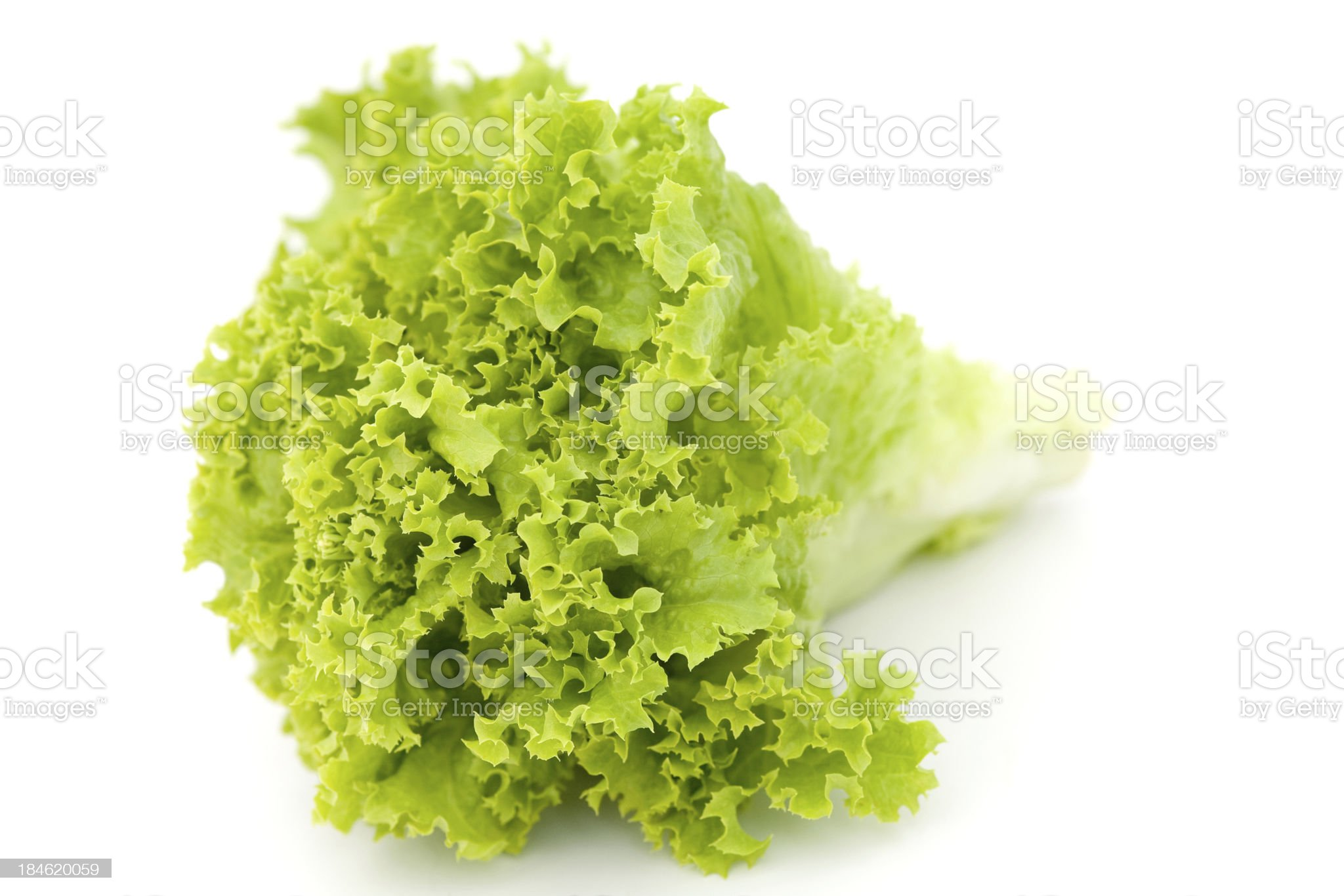 Leaf lettuce royalty-free stock photo