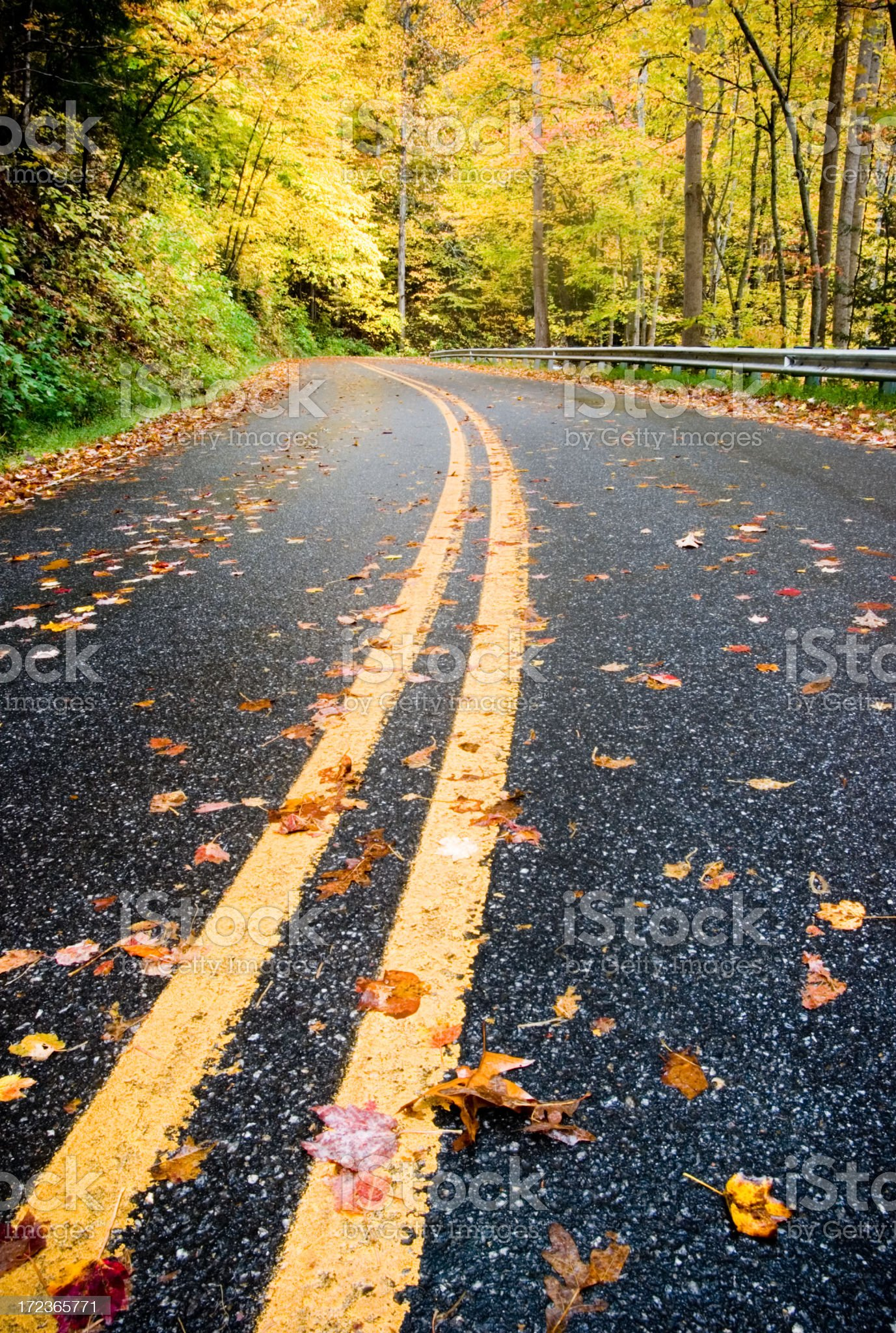 Leaf Looker Season in the Mountains royalty-free stock photo