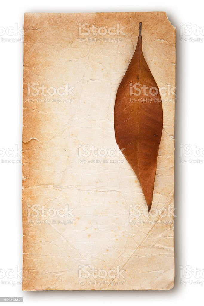 Leaf on Old Paper stock photo