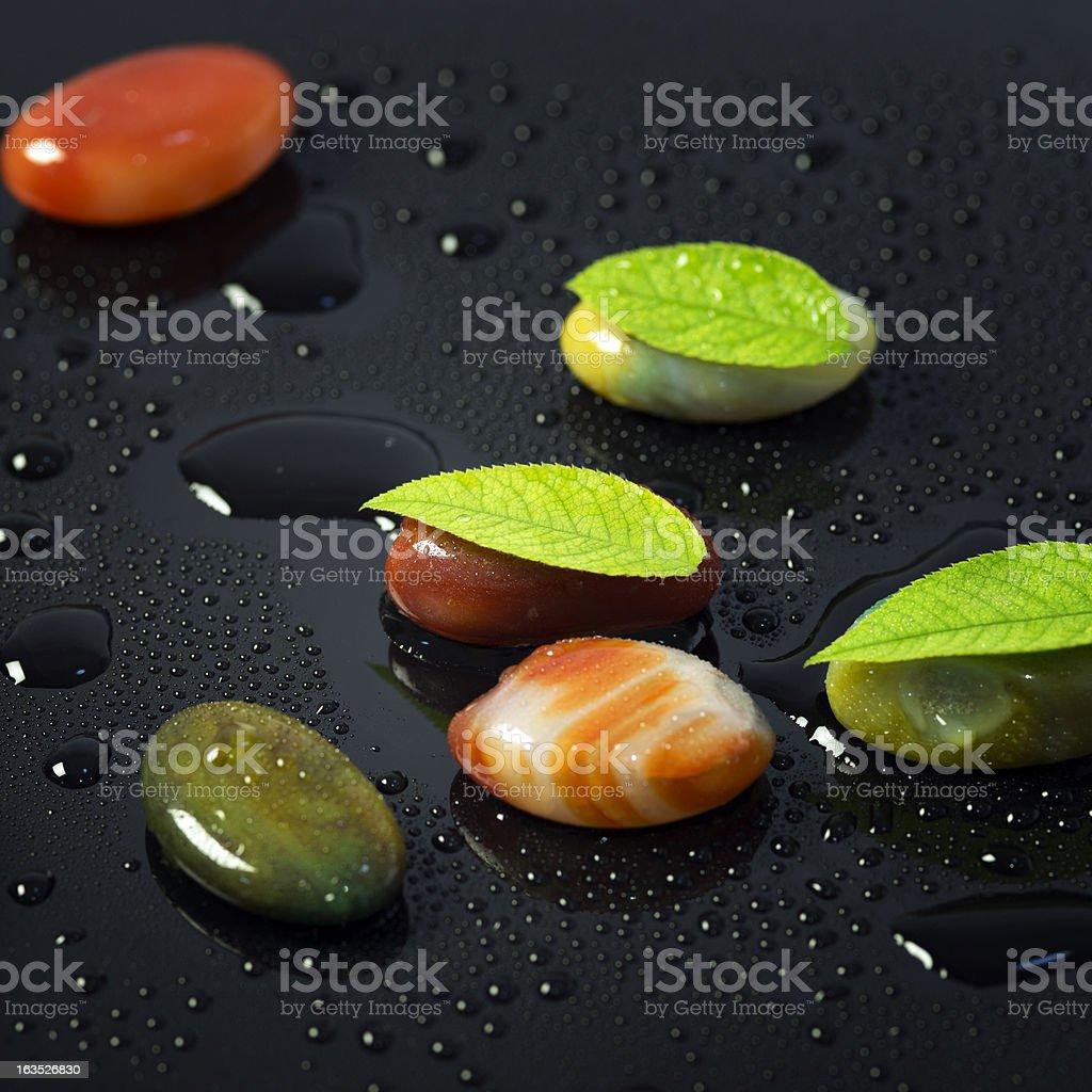 Leaf on stone stock photo