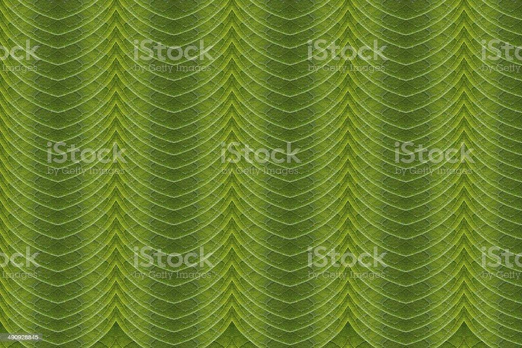 Leaf pattern. royalty-free stock photo