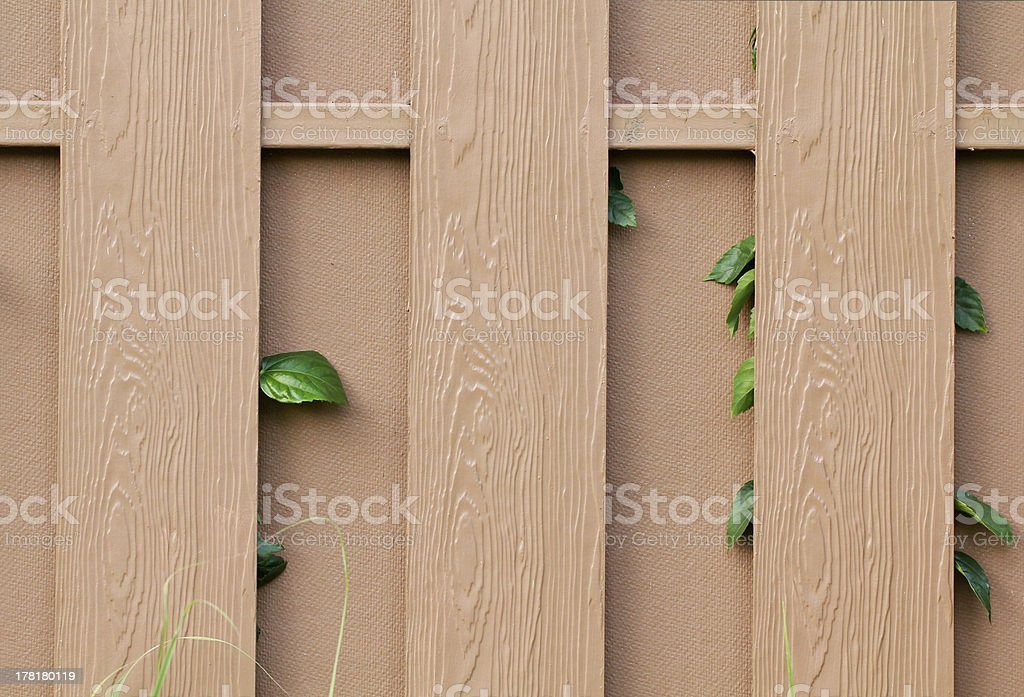 leaf plant over brown fence royalty-free stock photo