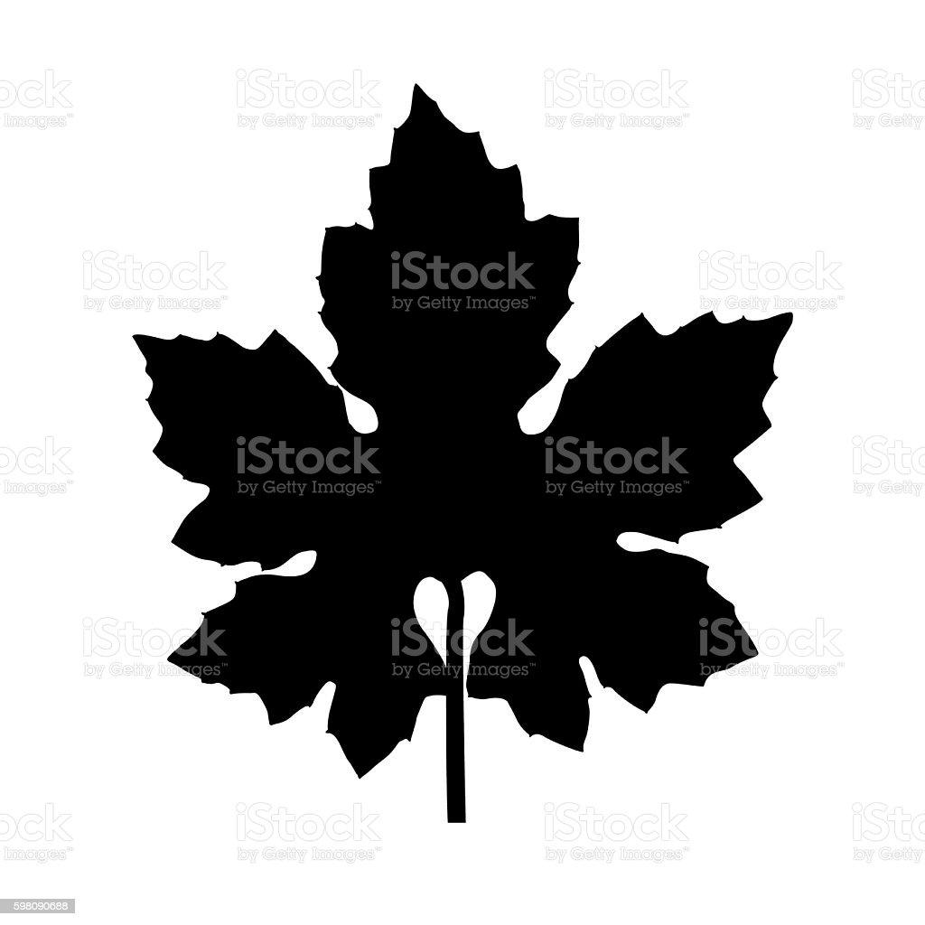 Leaf Silhouette stock photo