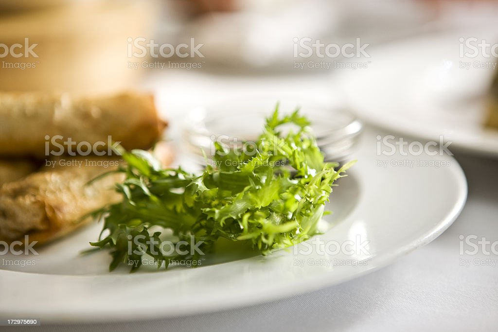 Leaf vegetable royalty-free stock photo