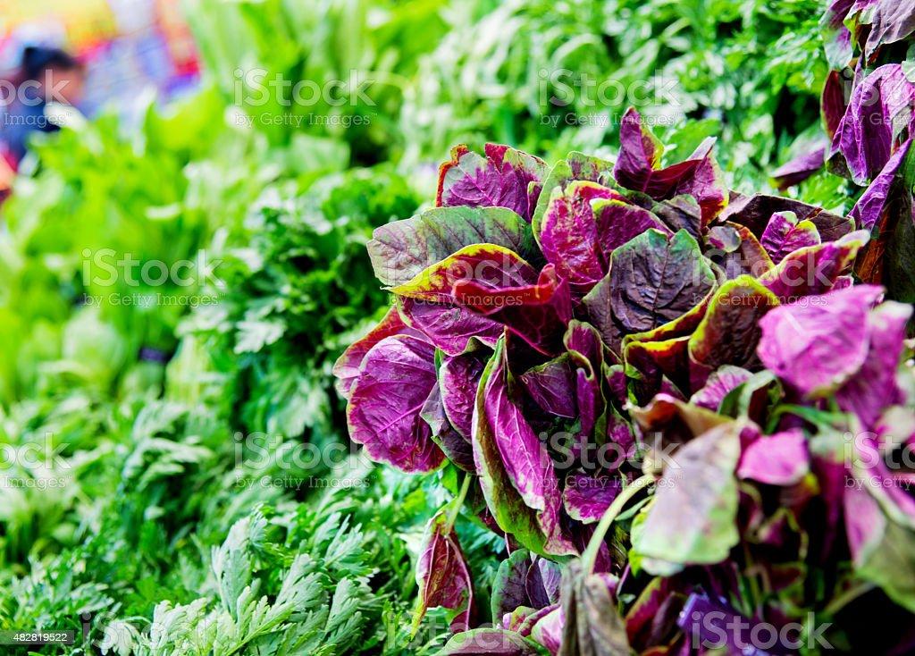 leaf vegetable stock photo