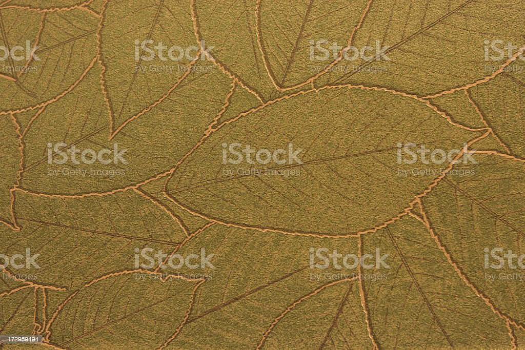 Leaf Vein Wallpaper Decor stock photo