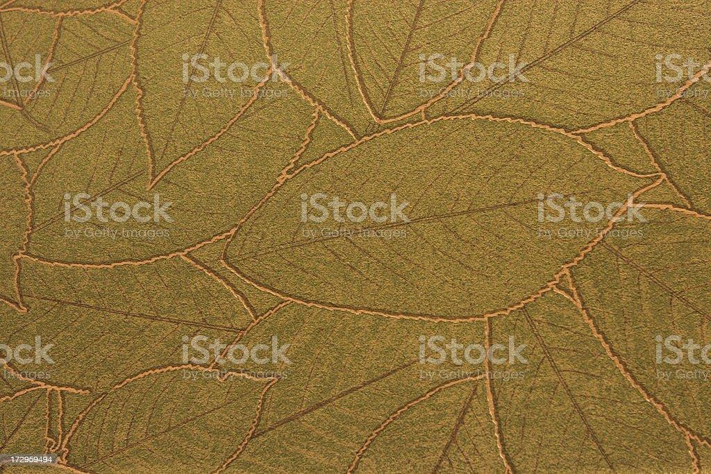 Leaf Vein Wallpaper Decor stock photo