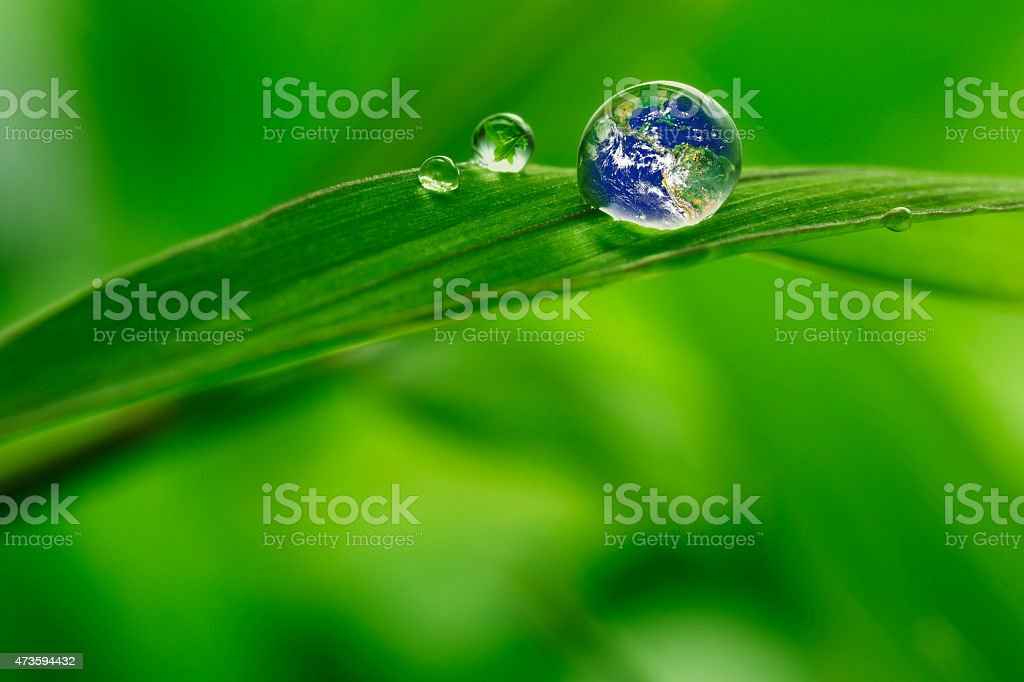 leaf with rain droplets - Recovery earth concept stock photo