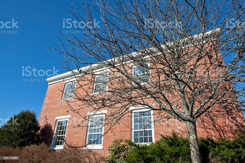 Leafless apple tree in front of old brick building. stock photo