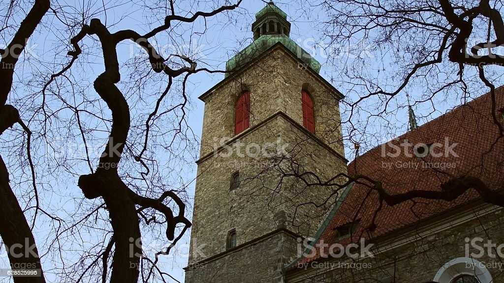 Leafless trees against the Church of St Henry and Kunhuta stock photo