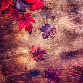 Leafs on Wooden Autumn Decoration Background