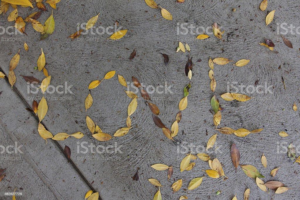 LOVE - leafs stock photo