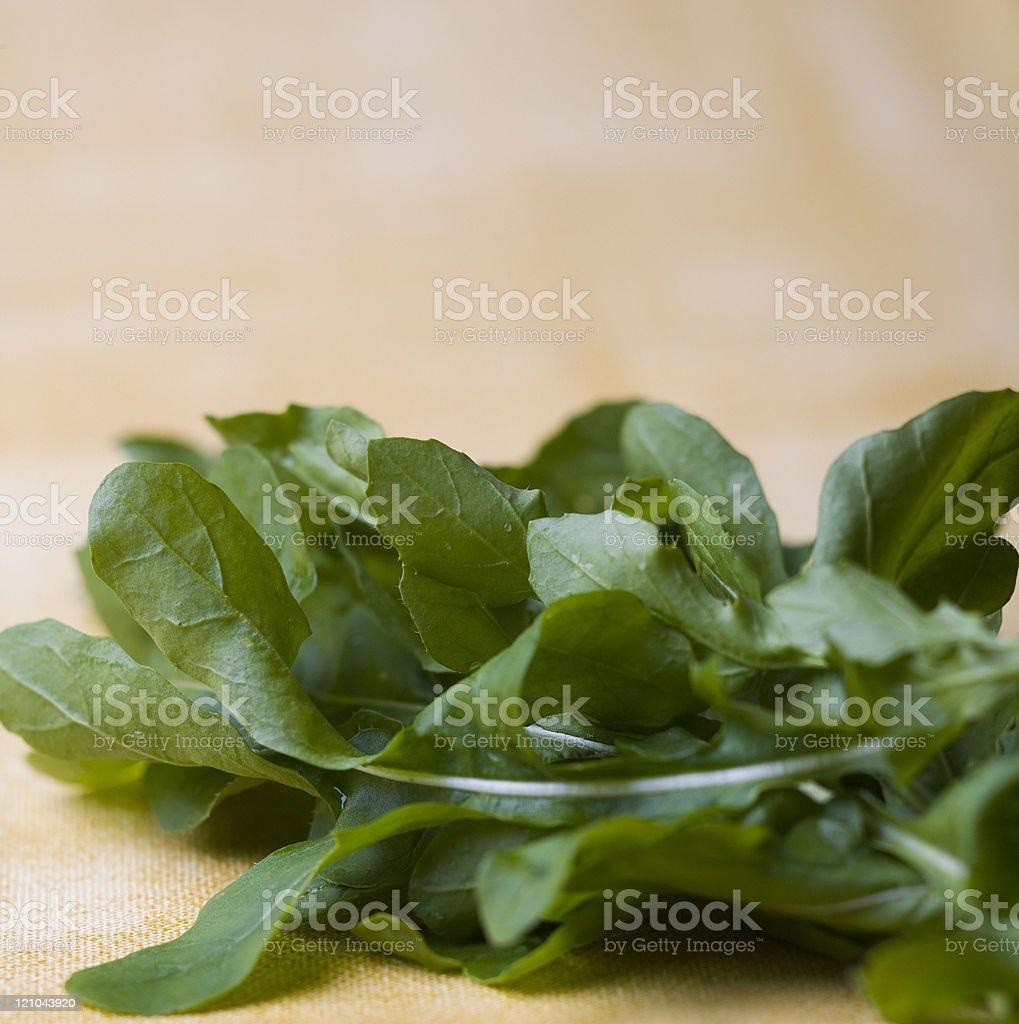 Leafy arugula royalty-free stock photo