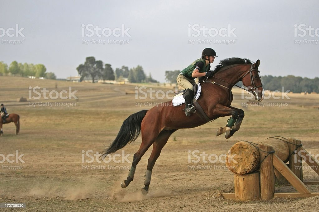 Leaping a Horse over Log stock photo