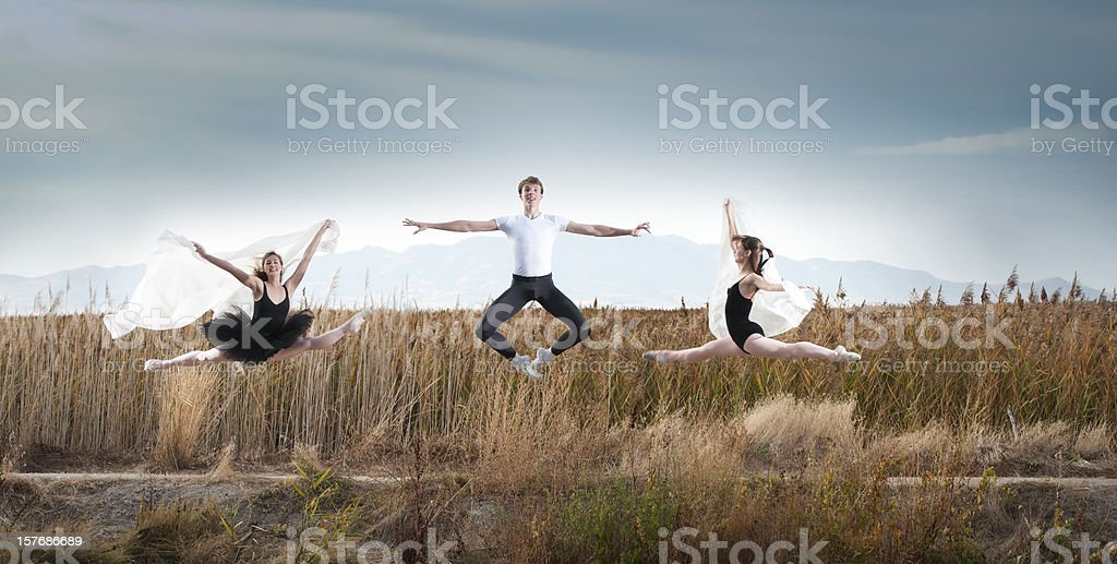 Leaping Dancers royalty-free stock photo