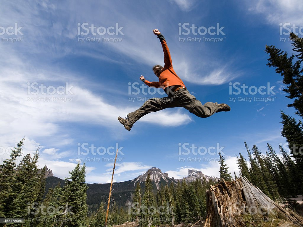 Leaping Lizards stock photo