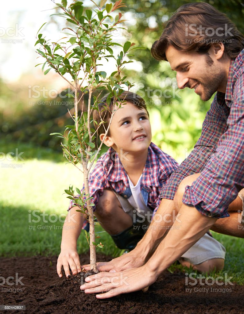 Learning about gardening from Dad stock photo